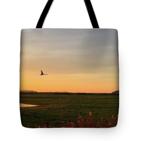Another Iphone Shot Of The Swan Flying Tote Bag by John Edwards
