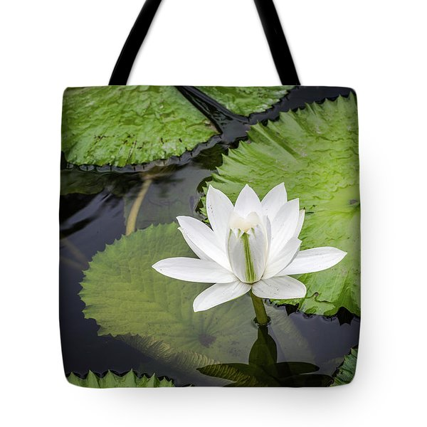 Another Lily Tote Bag
