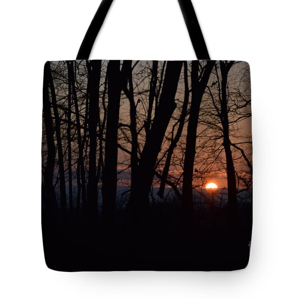 Another Sunrise In The Woods Tote Bag