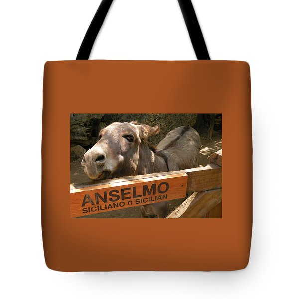 Tote Bag featuring the photograph Anselmo by Dianne Levy