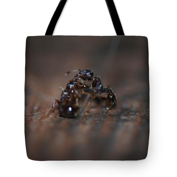 Ant Fight Tote Bag
