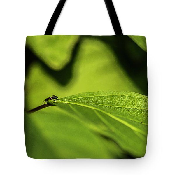 Tote Bag featuring the photograph Ant Life by JT Lewis