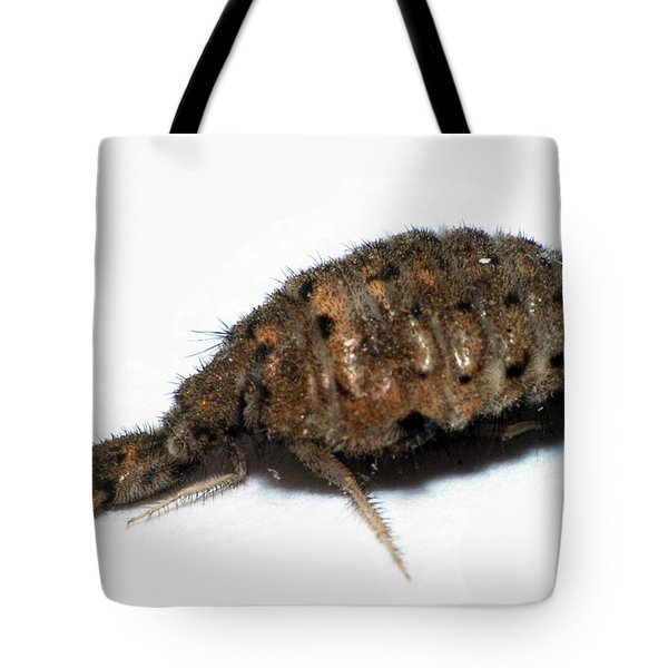 Ant Lion Tote Bag