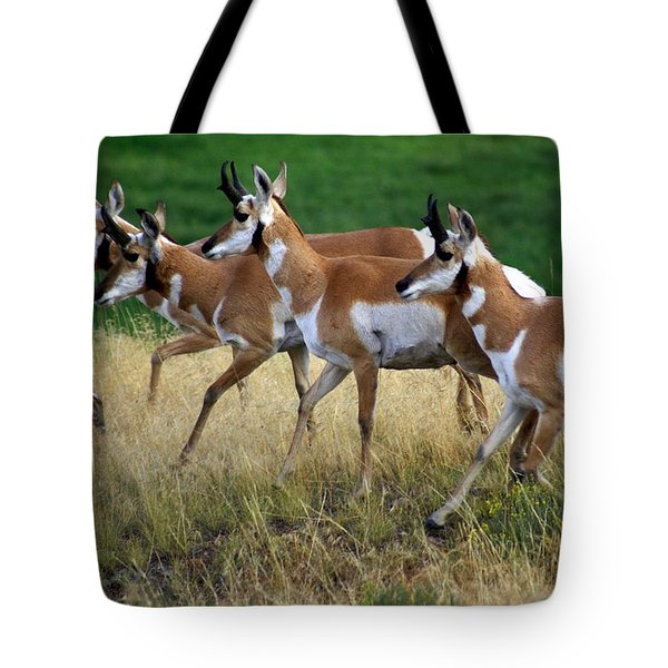 Antelope 1 Tote Bag by Marty Koch