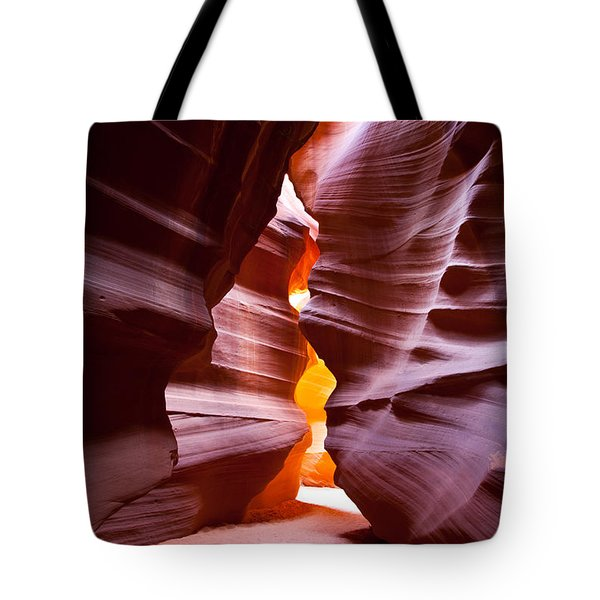 Antelope 6 Tote Bag