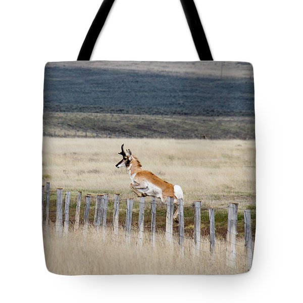 Tote Bag featuring the photograph Antelope Jumping Fence 1 by Rebecca Margraf