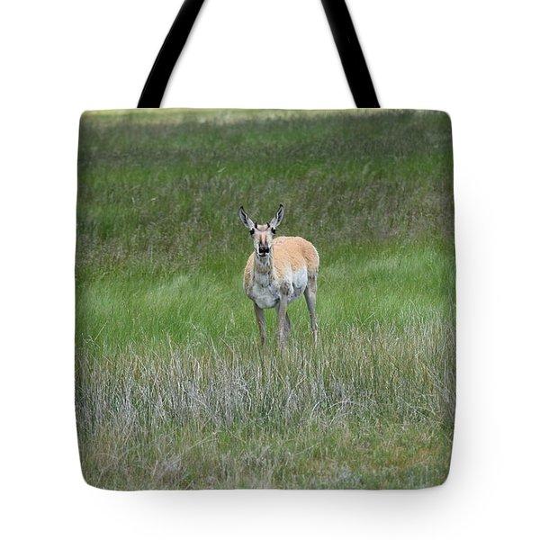 Prong Horned Antelope Lake John Swa Co Tote Bag