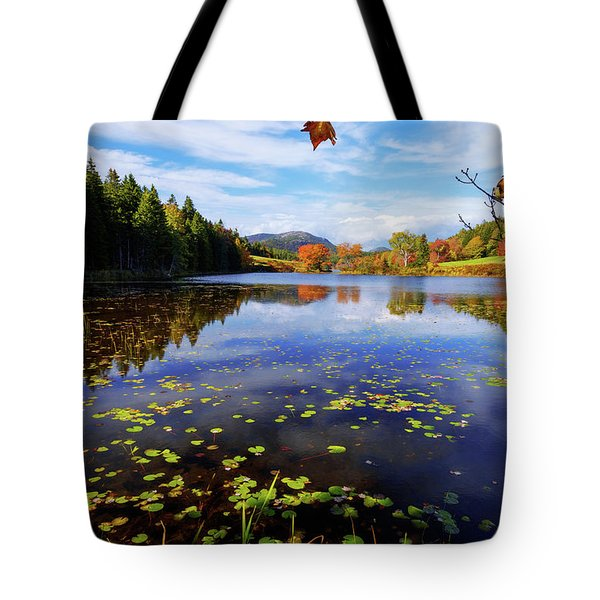 Anticipation Tote Bag
