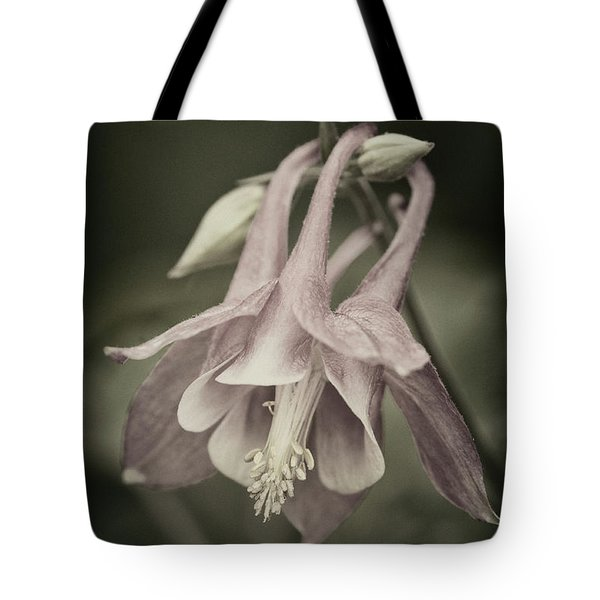 Tote Bag featuring the photograph Antique Columbine - D010096 by Daniel Dempster
