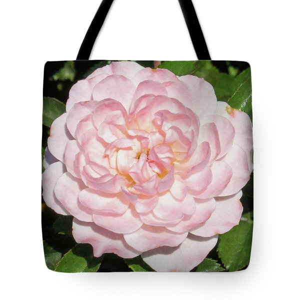 Antique Pink Rose Tote Bag by Mark Barclay