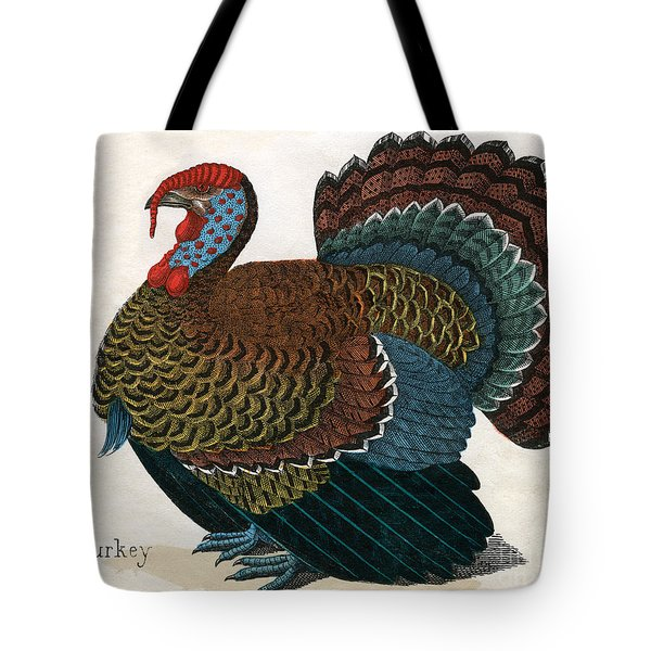 Antique Print Of A Turkey, 1859  Tote Bag by American School
