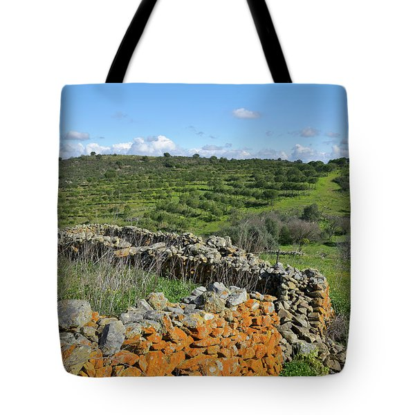 Antique Stone Wall Of An Old Farm Tote Bag by Angelo DeVal