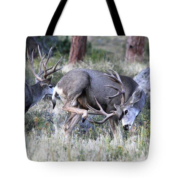 Tote Bag featuring the photograph Antler Scratch by Shane Bechler