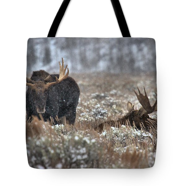 Tote Bag featuring the photograph Antlers In The Brush by Adam Jewell