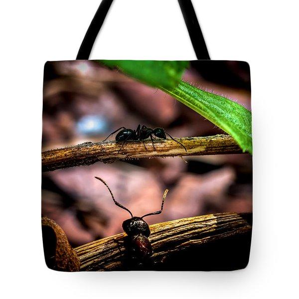 Ants Adventure Tote Bag