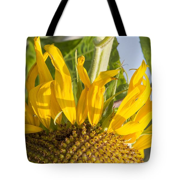 Ants On A Sunflower Tote Bag