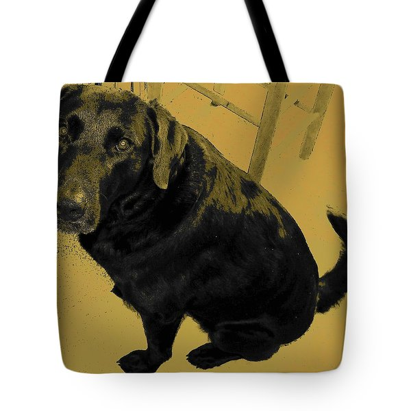 Tote Bag featuring the photograph Any Chance I Can Go With You by Lenore Senior