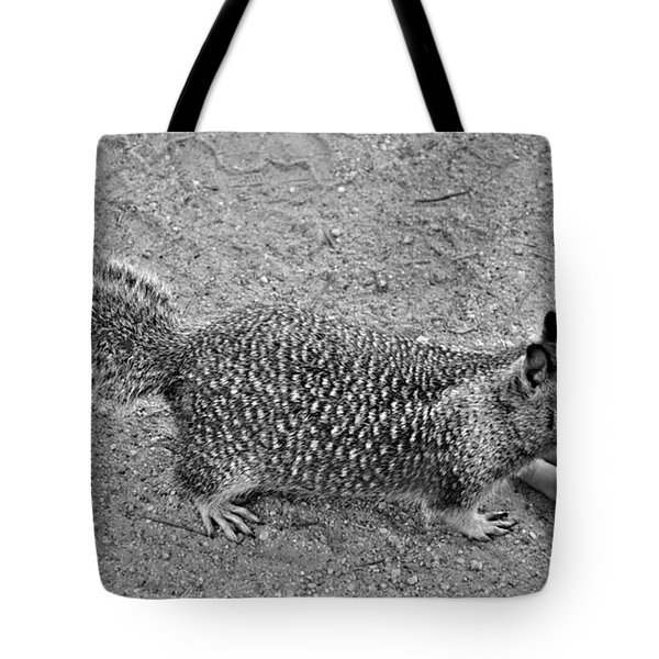 Any Lunch  Tote Bag