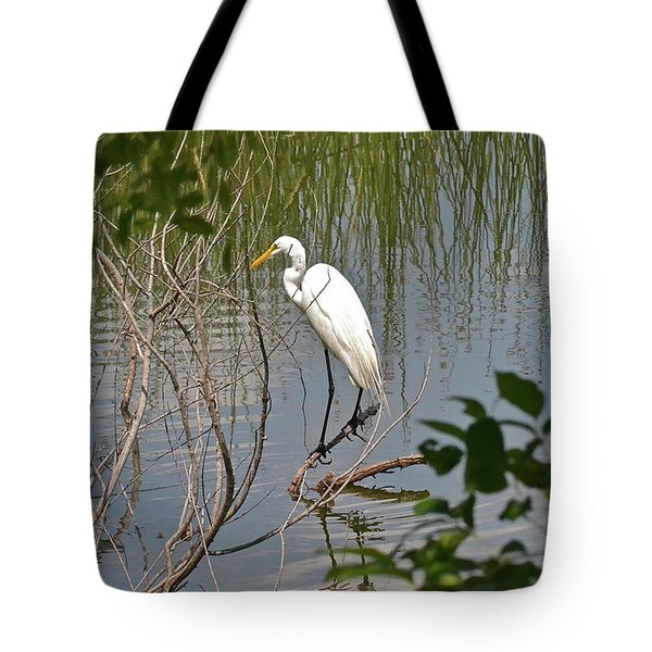 Tote Bag featuring the photograph Any Old Branch Is Home by Carol  Bradley