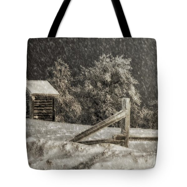 Any Port In A Storm Tote Bag by Lois Bryan