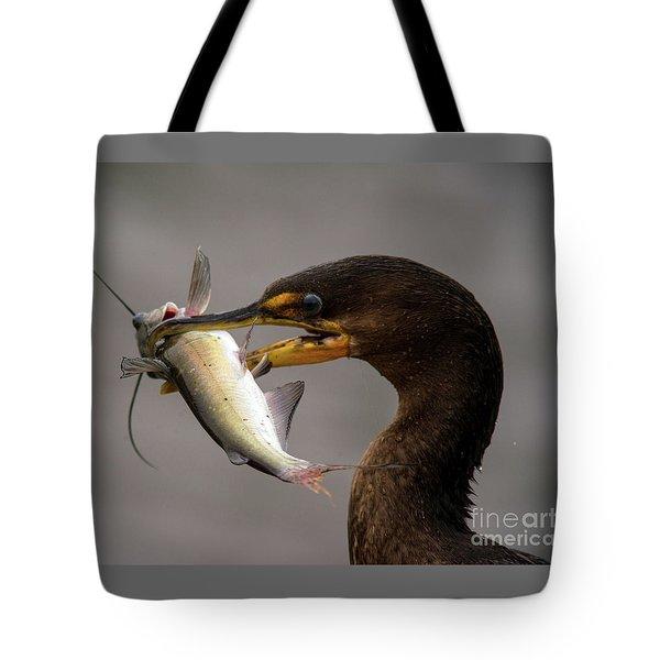 Anyone For Catfish? Tote Bag