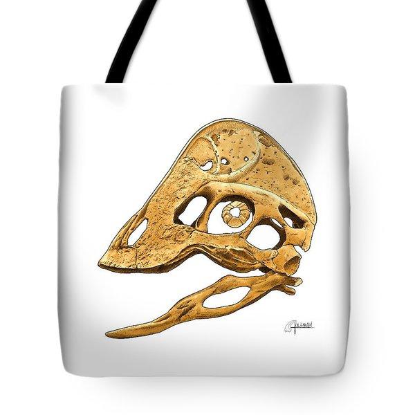 Anzu Wyliei Skull Tote Bag