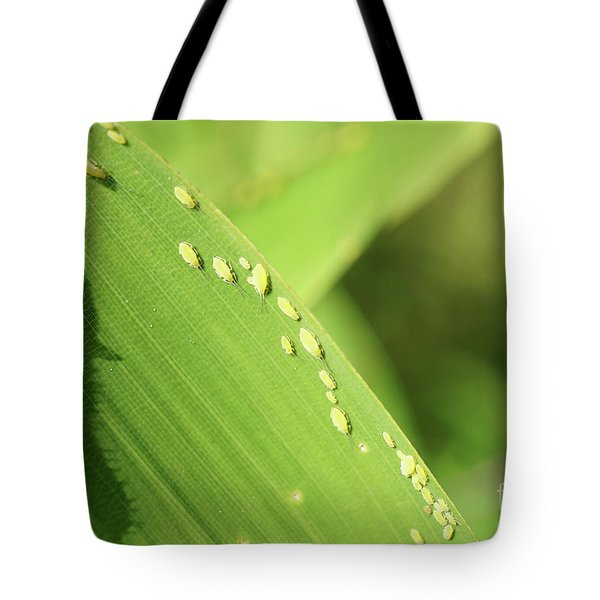 Aphid Family Tote Bag