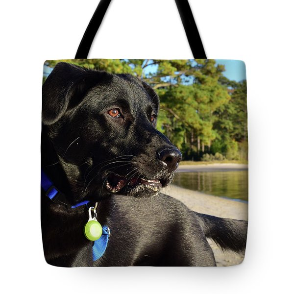 Apollo On The Beach Tote Bag