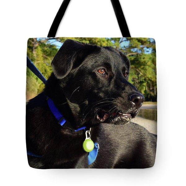 Apollo On The Beach Tote Bag