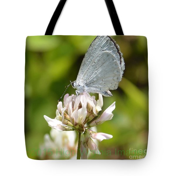 Appalachian Azure Tote Bag by Randy Bodkins