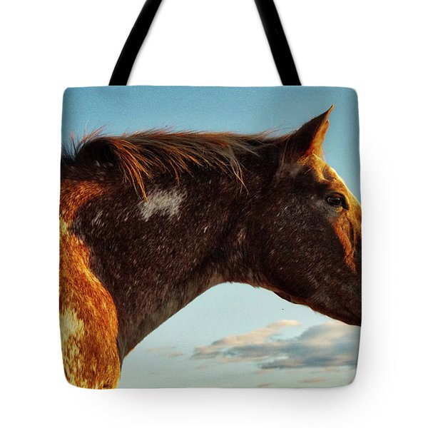 Appaloosa Mare Tote Bag