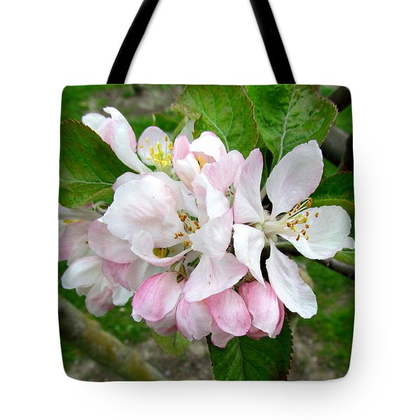 Apple Blossom Tote Bag by Joyce Woodhouse