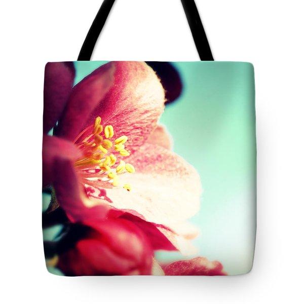Apple Blossom Tote Bag by Lisa Knechtel