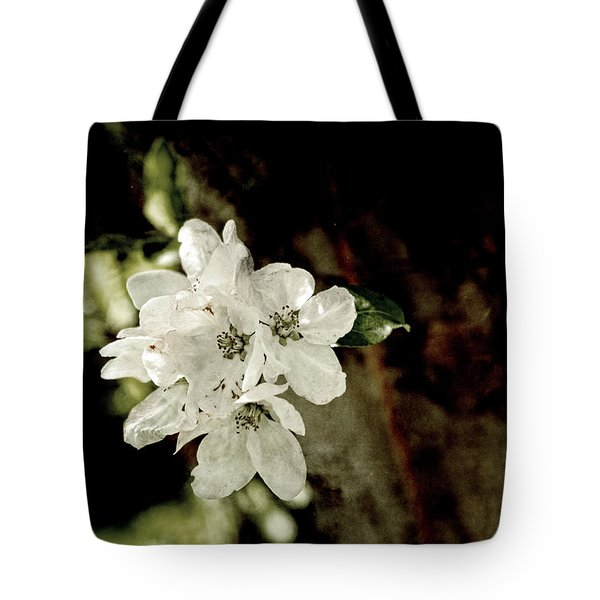 Apple Blossom Paper Tote Bag