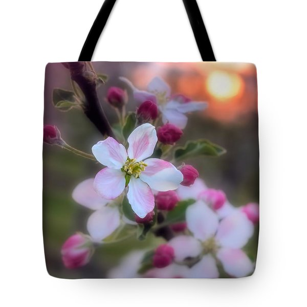 Apple Blossom Sunrise Tote Bag by Henry Kowalski