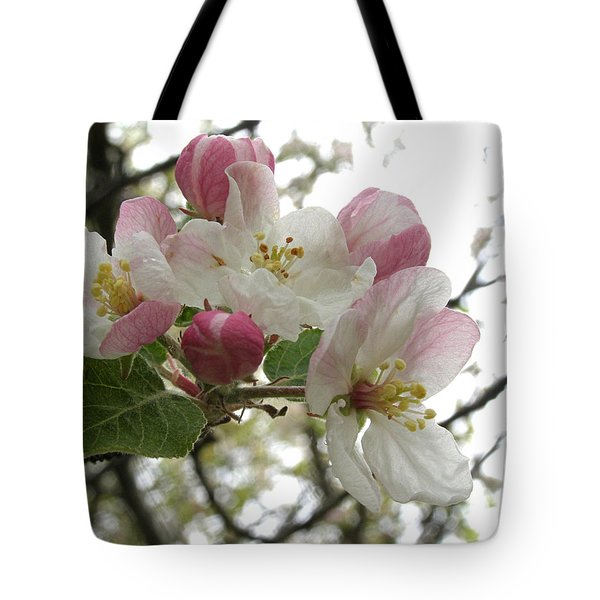 Tote Bag featuring the photograph Apple Blossoms - Wild Apple by Angie Rea