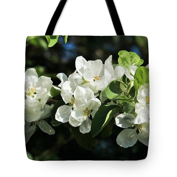 Apple Blossoms 2017 Tote Bag