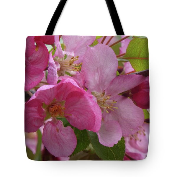 Apple Blossoms Tote Bag
