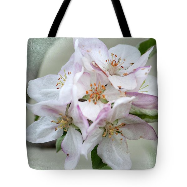 Apple Blossoms From My Hepburn Garden Tote Bag