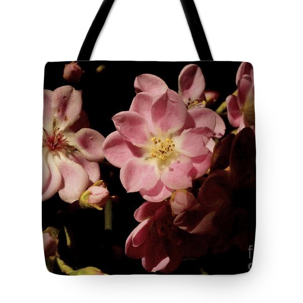 Apple Blossoms IIi Tote Bag