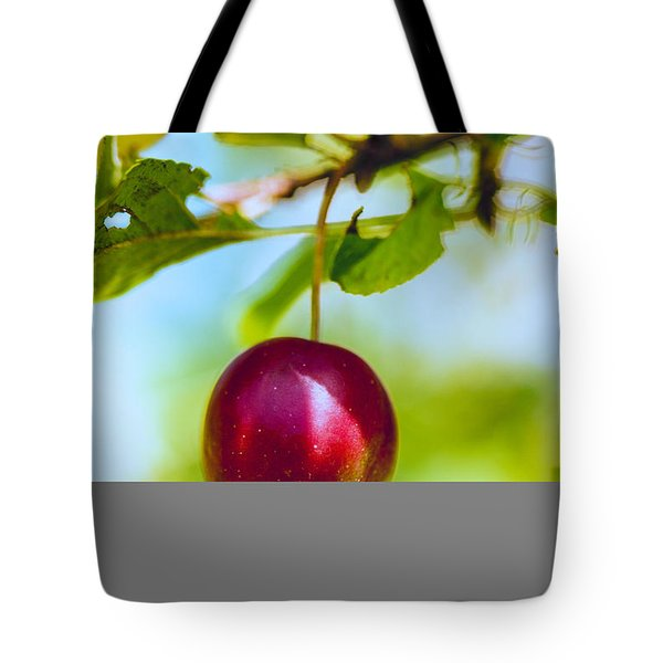 Tote Bag featuring the photograph  Crab Apple by Constantine Gregory