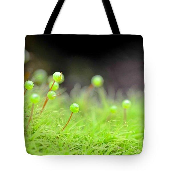 Apple Moss Tote Bag