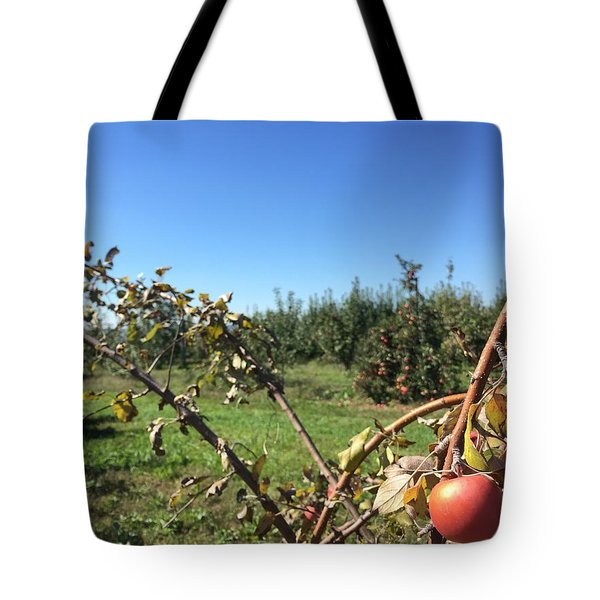 Apple Orchard 1 Tote Bag by Jason Nicholas