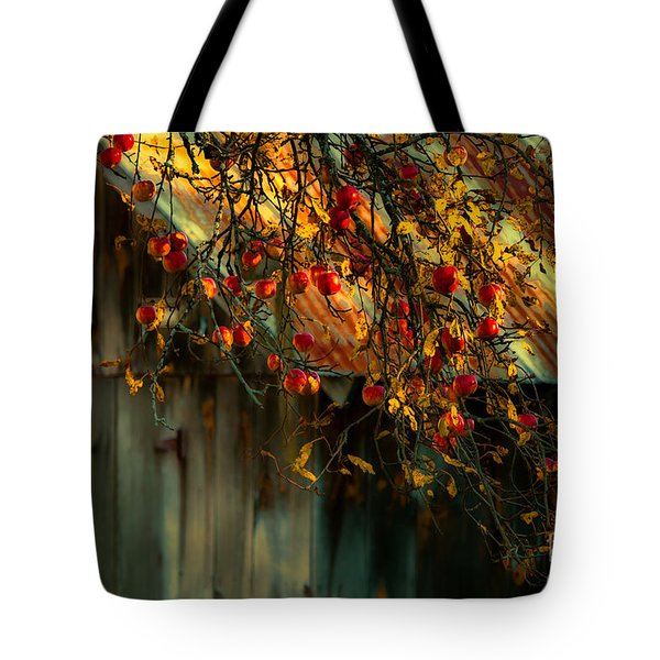Apple Picking Time Tote Bag by Sherman Perry