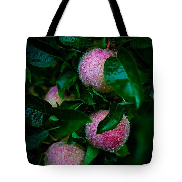 Apples After The Rain Tote Bag