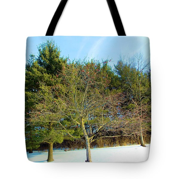 Tote Bag featuring the painting Apples In Winter by Carolyn Repka