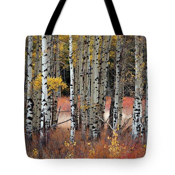 Appreciation II Tote Bag