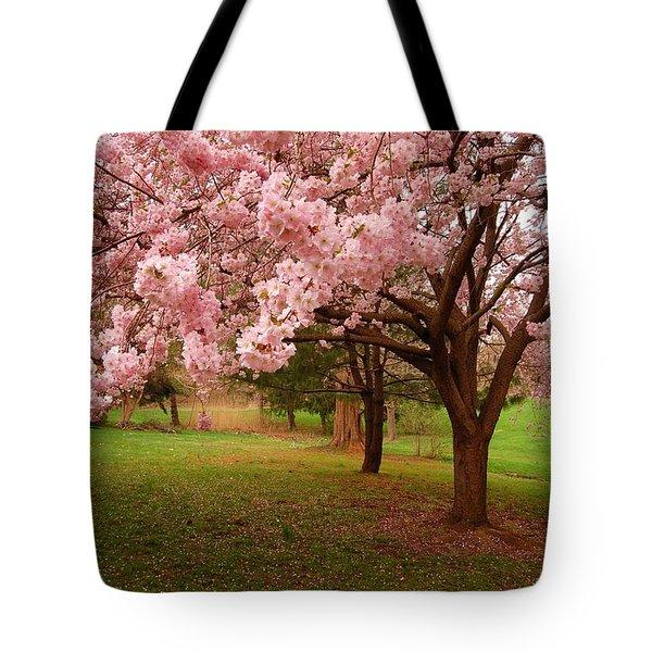 Approach Me - Holmdel Park Tote Bag