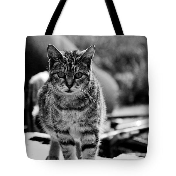 Tote Bag featuring the photograph Approaching  by Chriss Pagani