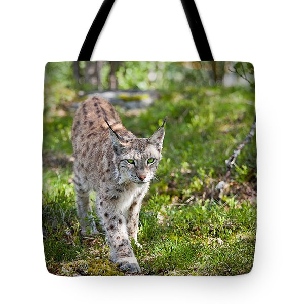 Approaching Lynx Tote Bag by Yngve Alexandersson